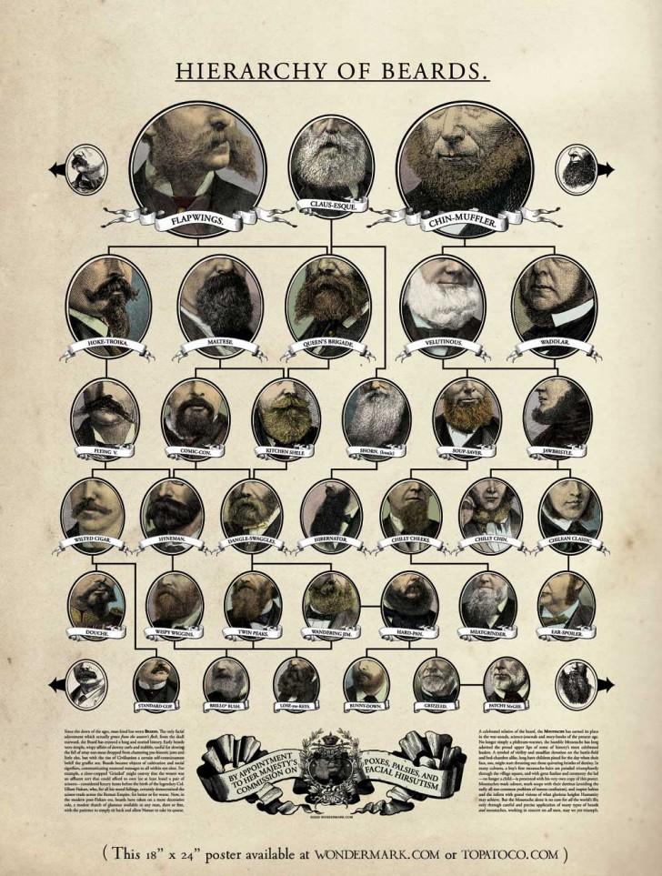 """Hierarchy of Beards"" (by David Malki)"